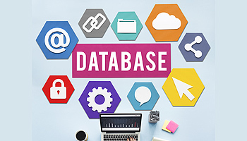 Database marketing small